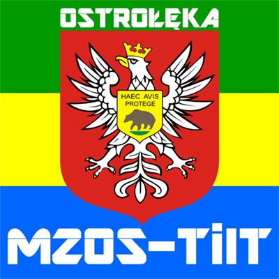 Miejski Zarząd Obiektów Sportowo - Turystycznych i Infrastruktury Technicznej w Ostrołęce